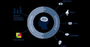 Analisi sensoriale & consumer science